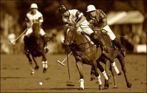 #polo sport#Etats-Unis